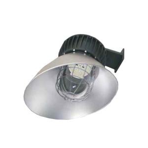 James Industry FYZD F Series Explosion Proof Area Light Multiple Configuration Options (Hazardous)
